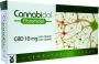 CANNABIDOL FIBROMIDOL - 40 CAPSULAS